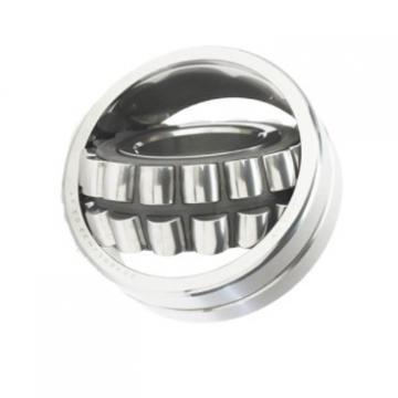 Ca/Ma/MB/Cc/E/Ek/K/ W33 Type Self-Aligning Roller Bearing with 22200, 22300, 21300 Series