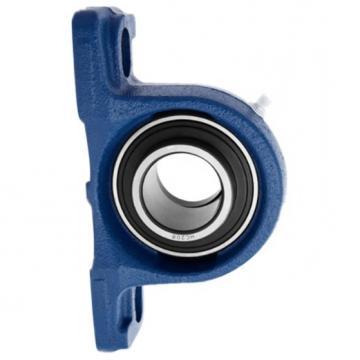 NSK SKF Timken Koyo NTN NACHI Wheel Bearings Pherical Roller Bearing Taper Roller Bearing Cylindrical Roller Bearing Deep Groove Ball Bearing 6307